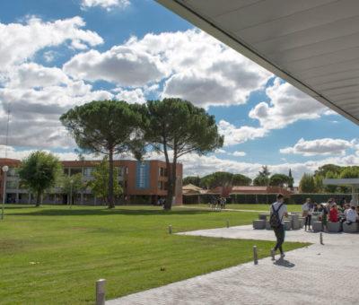 La UCJC plantará 1 millón de árboles en todo el mundo