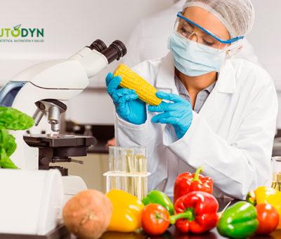 Los mejores cursos de Instituto DYN para trabajar en la industria alimentaria